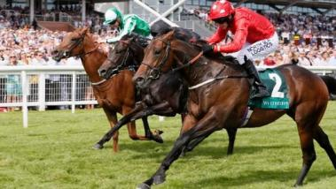 Weatherbys Super Sprint 2018