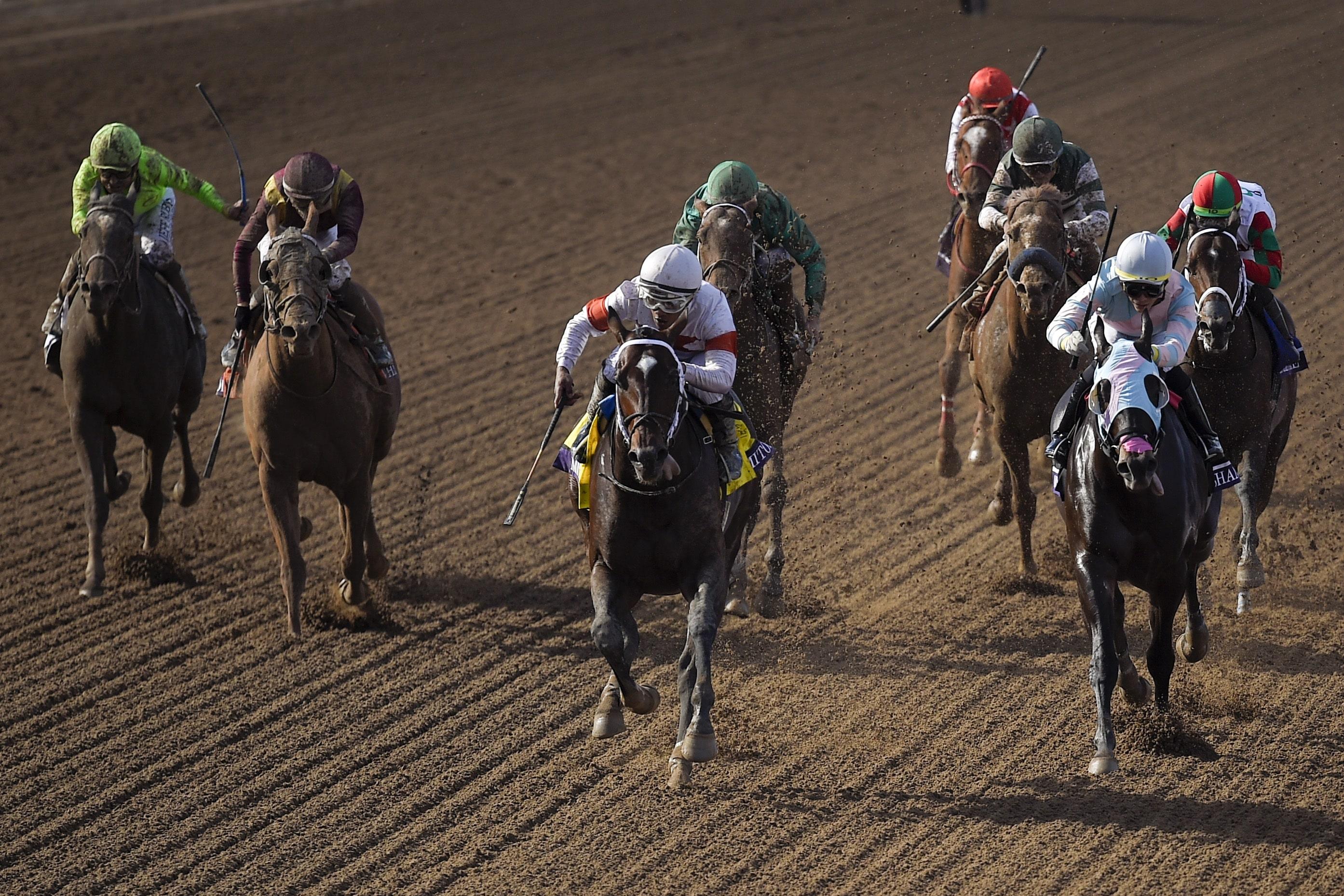 Race horse betting strategies 1v1 csgo betting