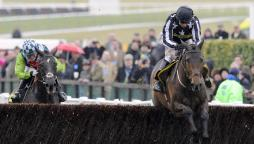 Statistics and trends for the Champion Chase at the Cheltenham Festival