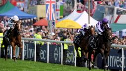 Investec derby betting calculator kentuky derby betting