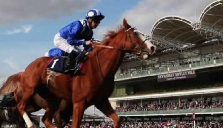 Spotlight On The Sun Chariot Stakes   Betting Tips & Odds