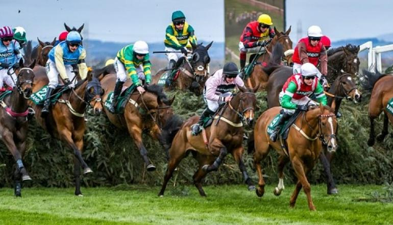 Horse Racing: A Look At Three 2019 Grand National Contenders