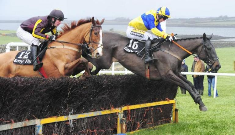 Horse Racing Tips: 2019 Sky Bet Chase (26th January) | Odds