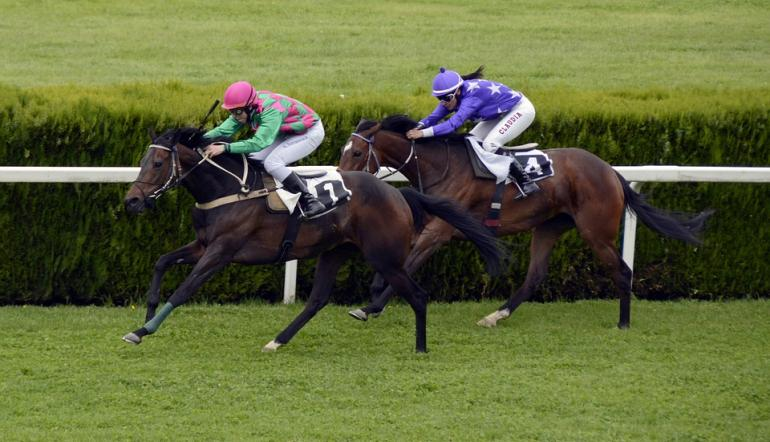 Horse Racing: 2019 Imperial Cup Preview | Betting Tips & Odds