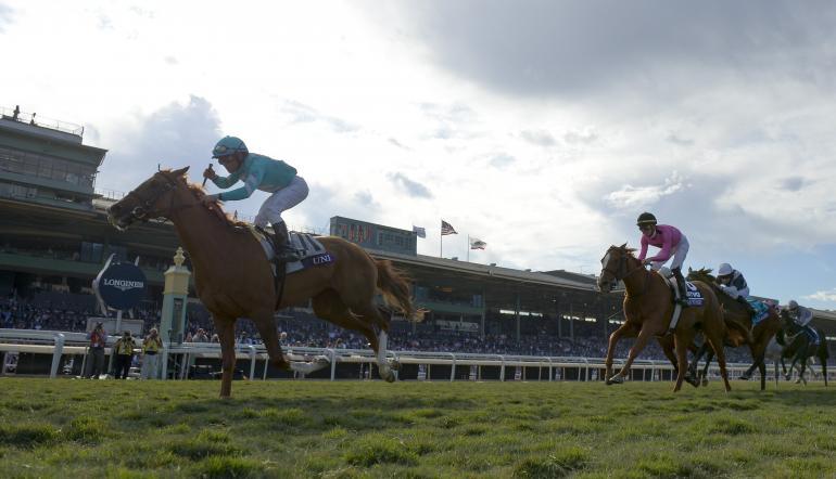 Ascot races betting odds peperangan betting maroc