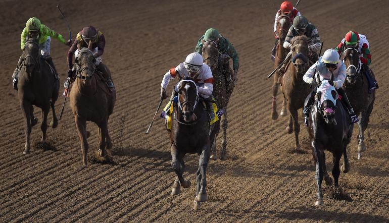 Horse racing betting strategies emmenegger binary options