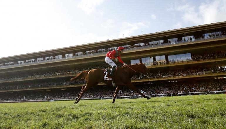 Rsa chase 2021 betting trends bet sports personality year