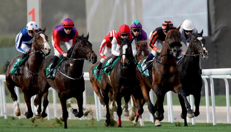 cheltenham supreme novices hurdle betting websites
