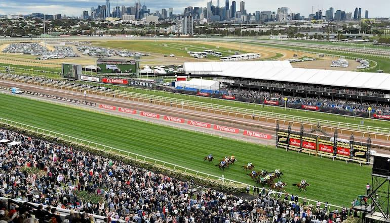 Beginners guide to horse racing australia betting pariuri sportive live betting