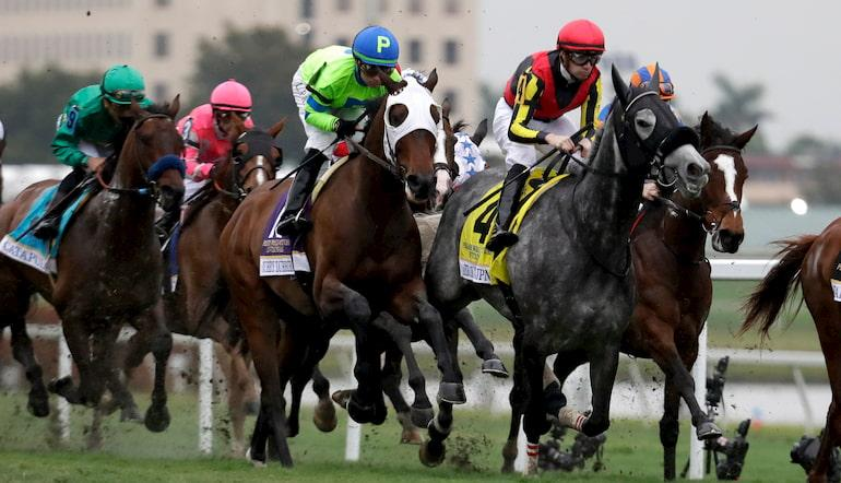 Us horse racing betting tips paddy power betting rules