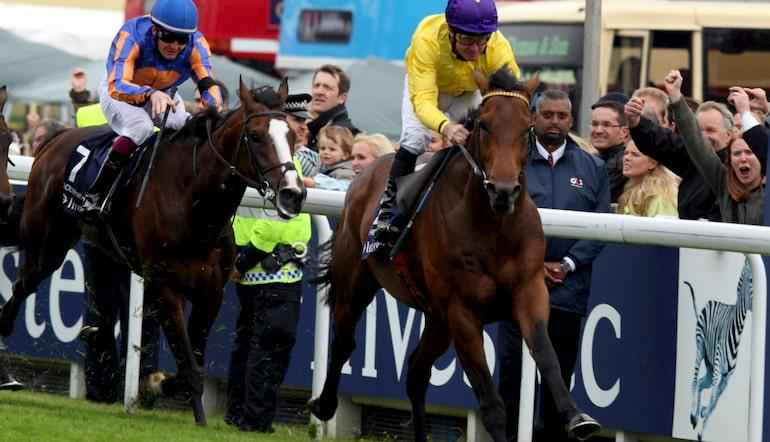 Watch frankel win 2000 guineas betting blackjack betting strategy without counting cards youtube