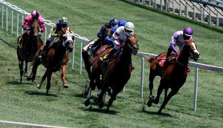 types of horse racing sports betting