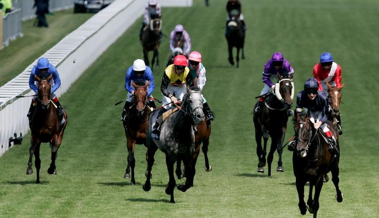 best horse to bet on at ascot