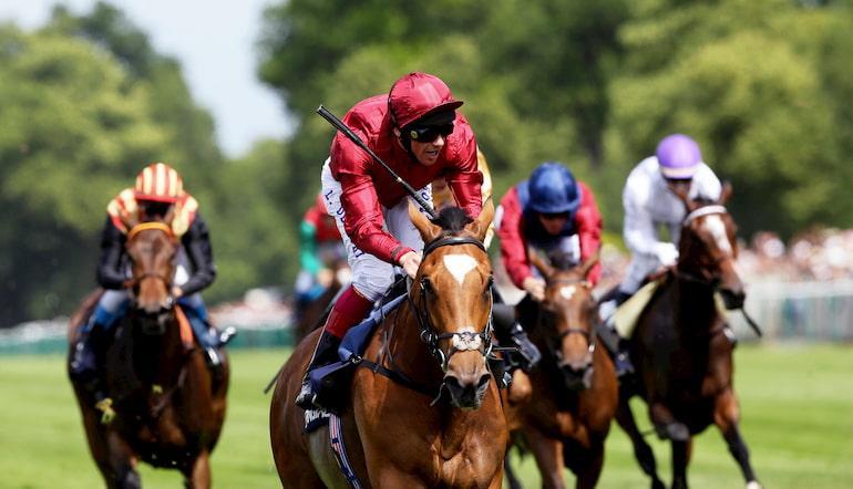 Darley horse racing australia betting steelers vs texans 2021 betting odds