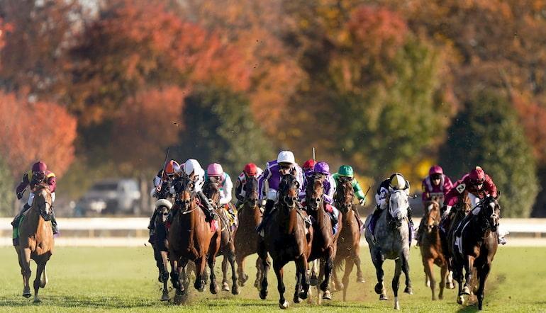 Irish horse racing betting terms deportivo la coruna vs valencia betting expert boxing