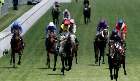 John smiths cup york 2021 betting odds horse betting analyst review free