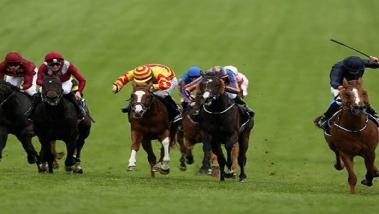 Emma's Epsom Derby preview